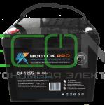 ИБП (инвертор) Энергия Гарант 500(пн-500) + Аккумуляторная батарея Восток PRO СК-1255
